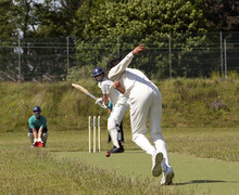 Cricket 001
