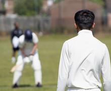 Cricket 003