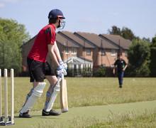 Cricket Player 002