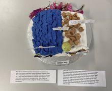 Geo Cake #2